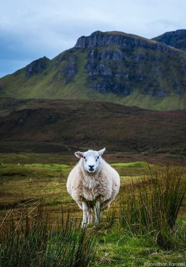 Isle of Skye-20